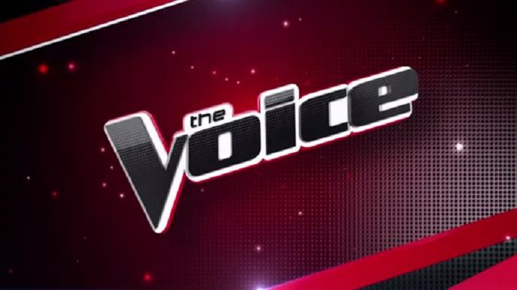Fans Criticize 'The Voice' Mentor's 'Greasy' Appearance on Instagram