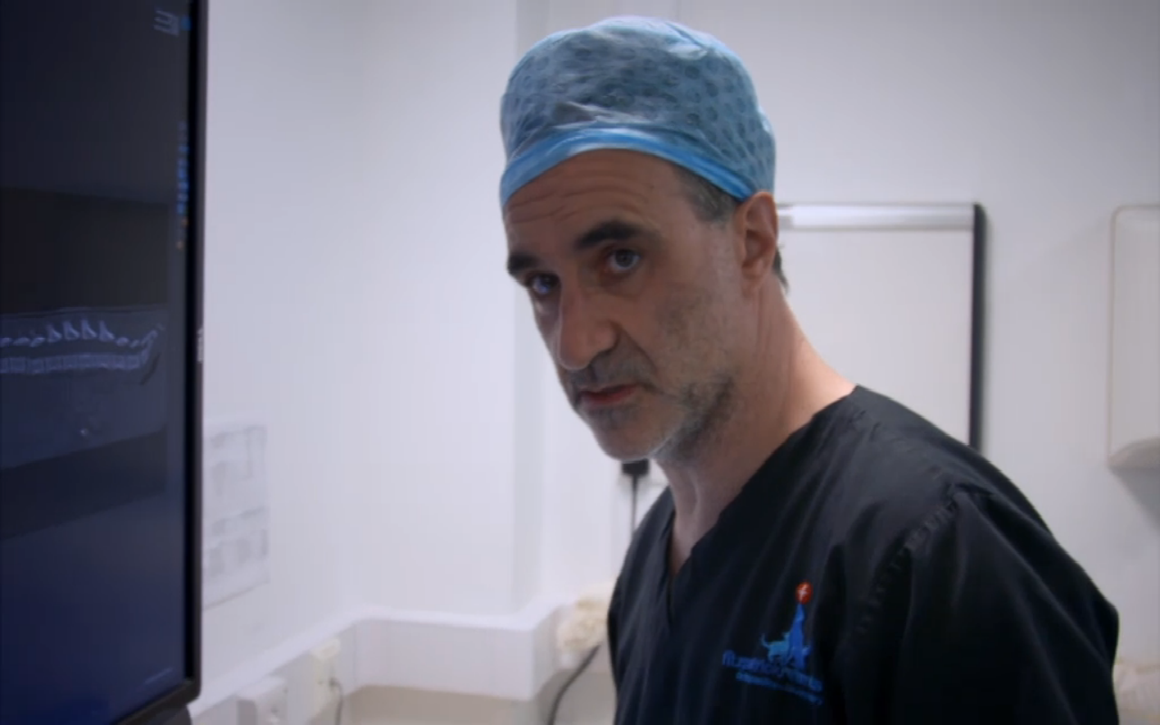 noel fitzpatrick 2018 Supervet viewers have a message for the Queen as Professor Noel  noel fitzpatrick 2018