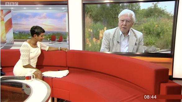 Sir David Attenborough looks unimpressed in awkward BBC Breakfast interview