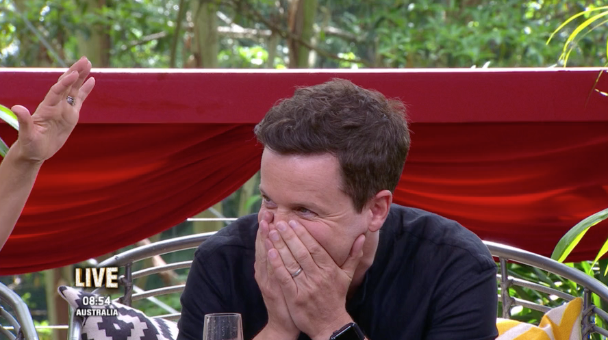 Dec Donnelly drops saucy sex comment to I'm A Celeb co-host Holly Willoughby