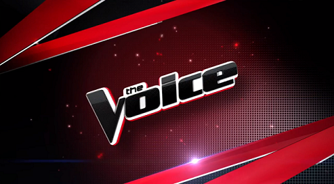 Fans in Heated Debate Over 'The Voice' Judge's Christmas Video