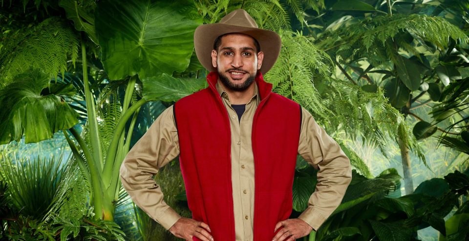 Ant and Dec cringe as Amir Khan makes embarrassing mistake during tonight's Bushtucker Trial