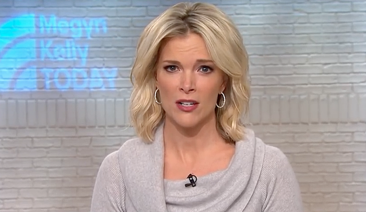Megyn Kelly Slams 'False' Reporting on Her Harassment Complaints at Fox News
