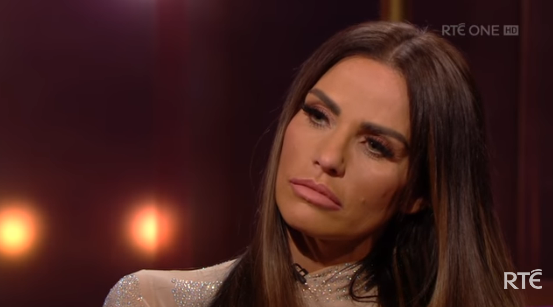 Katie Price announces that her dog has been killed in a hit and run