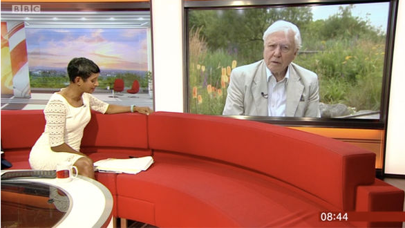 Sir David Attenborough looks unimpressed in awkward BBC Breakfast interview