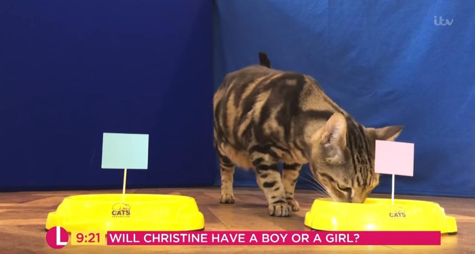 Christine Lampard's baby shower on Lorraine