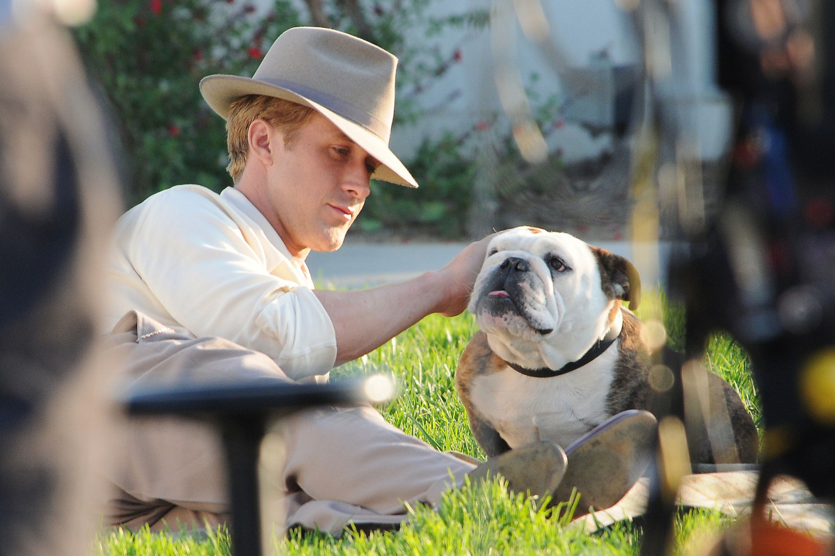 Ryan Gosling with a bulldog on the set of his new movie 'The Gangster Squad'