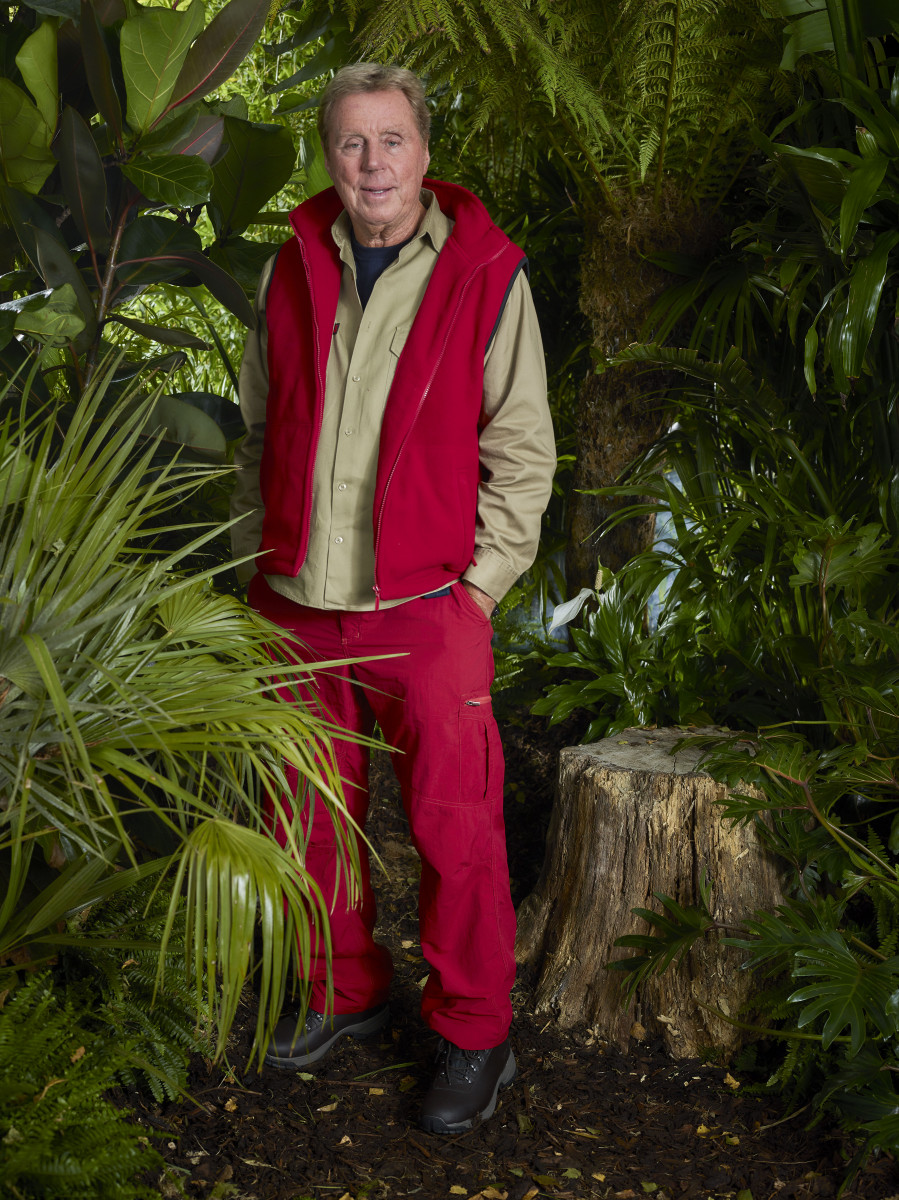 I'm A Celebrity Harry Redknapp