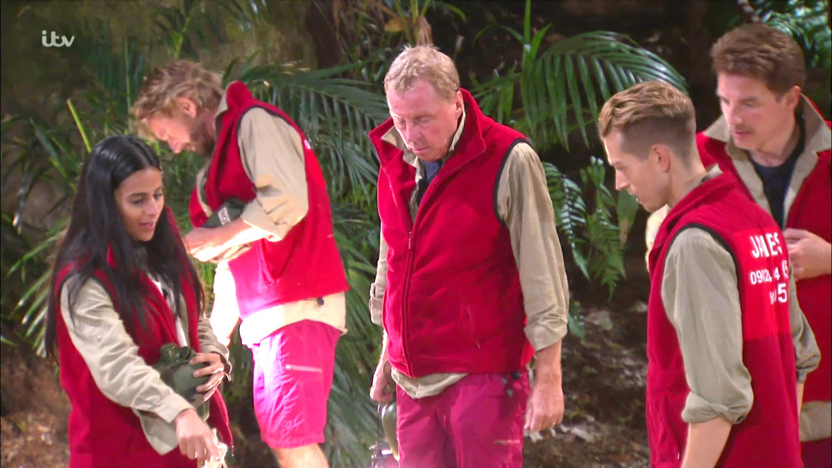 Harry Redknapp and his campmates on I'm A Celeb