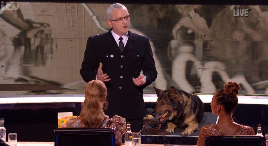 BGT viewers swoon over 'handsome' vet who saved police dog Finn's life after stabbing