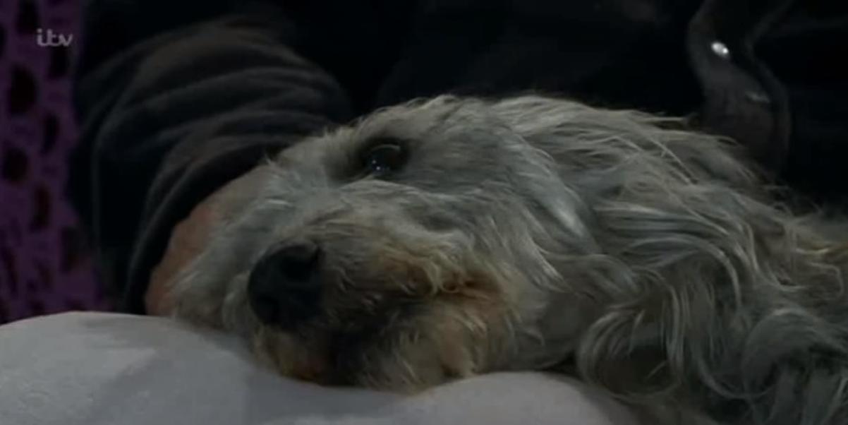 Emmerdale Alfie dies Credit: ITV/YouTube
