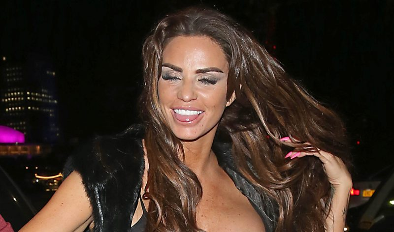 Katie Price 'desperate to collaborate with Peter Andre on UK tour and new album'