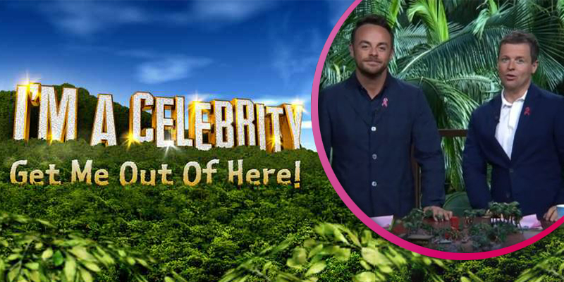 I'm A Celebrity...Get Me Out Of Here! theme park to open in the UK