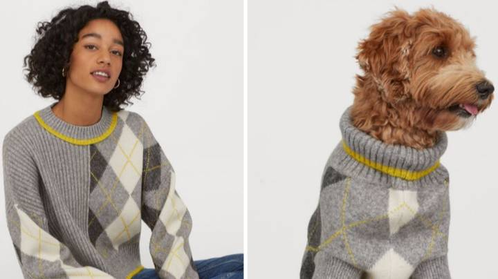 H&M launches matching jumpers for DOGS and their owners