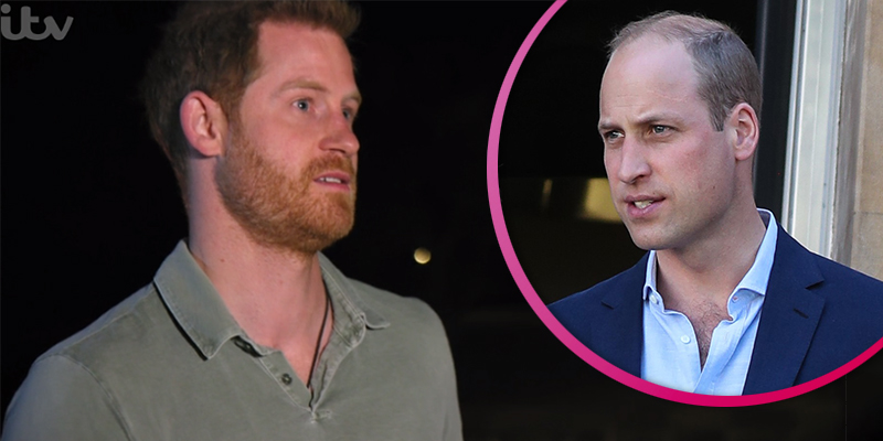 Royal fans pick sides as Prince Harry hints at rift with brother William