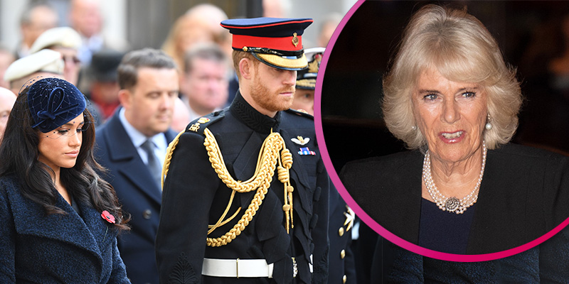 Meghan makes her first Field of Remembrance visit with Harry as Camilla pulls out due to illness