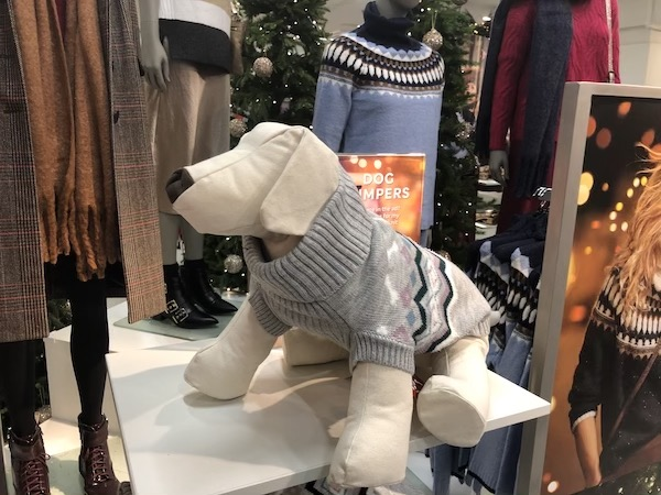 Marks & Spencer is now selling Christmas jumpers for dogs!