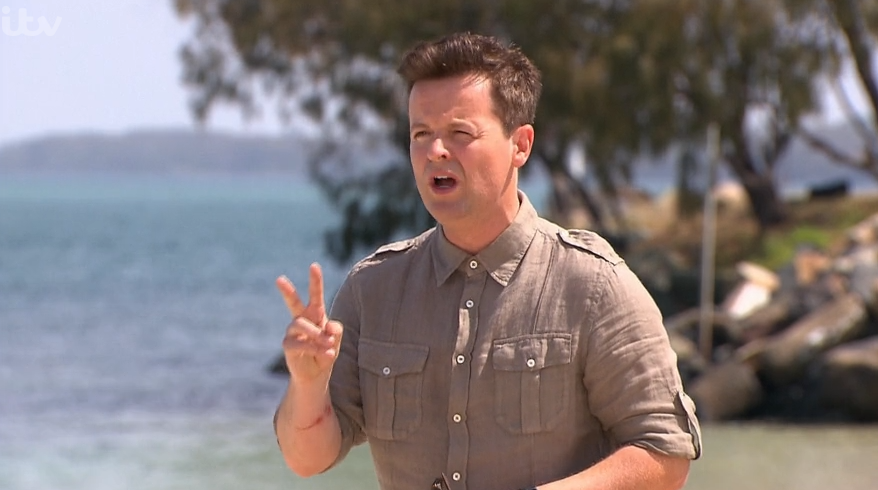 Dec Donnelly on I'm A Celebrity