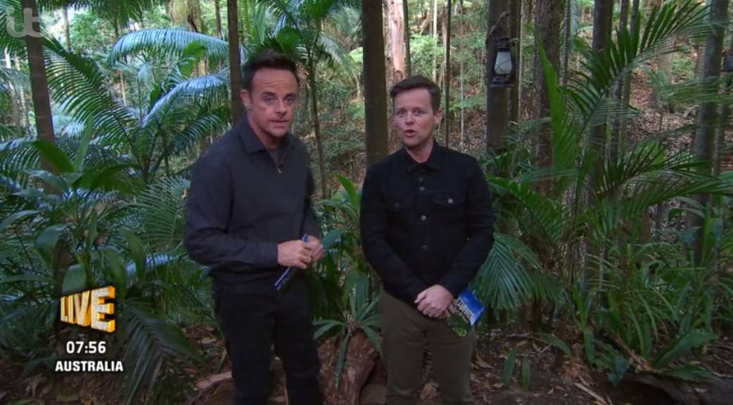I'm A Celebrity - Ant and Dec