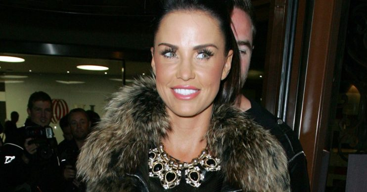 Katie Price is looking for a nanny on instagram