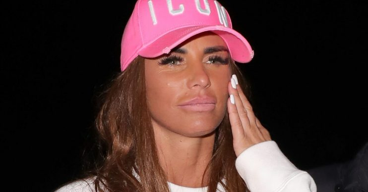 Katie price slammed by neighbours for dead pets