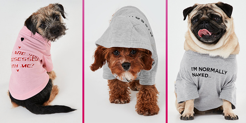 Missguided adds to its doggy clothing range and there are jumpers that'll let you twin with your pooch