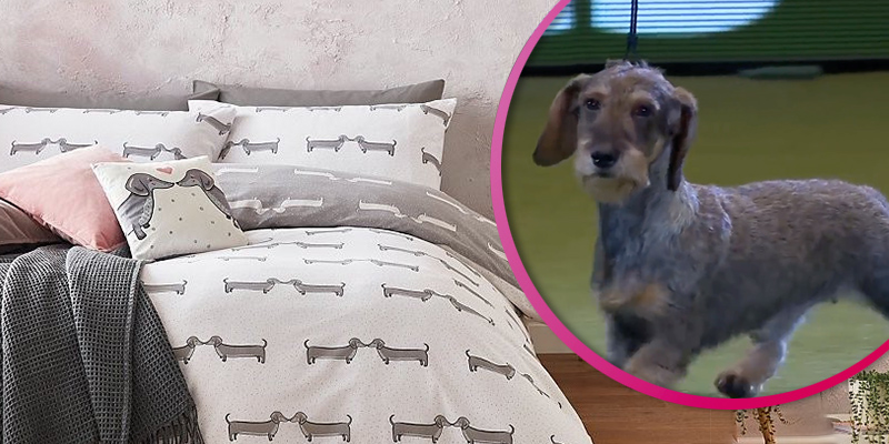 Asda's sausage dog homeware range set to fly off the shelves after a dachshund wins Crufts
