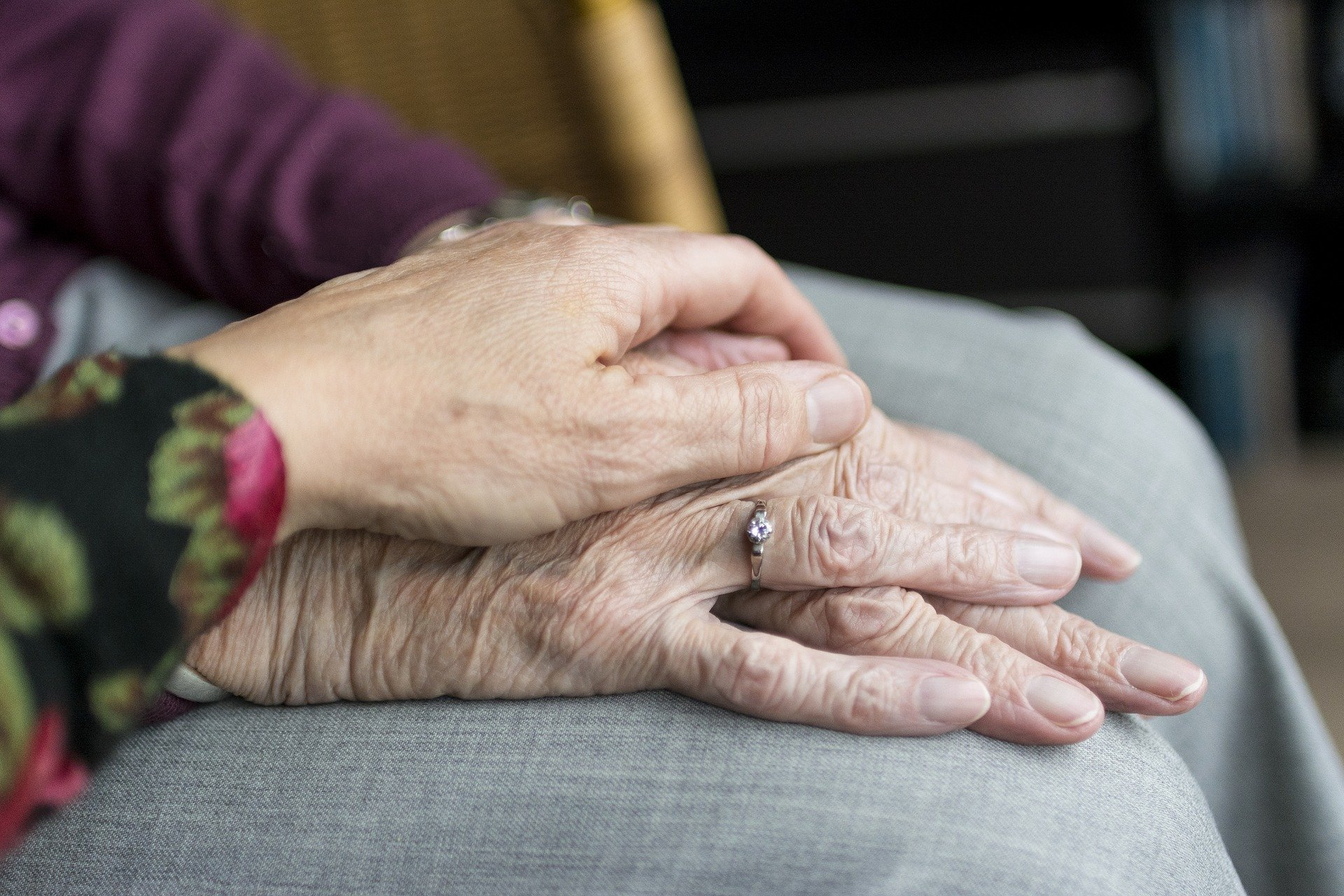 Elderly person, old person's hand