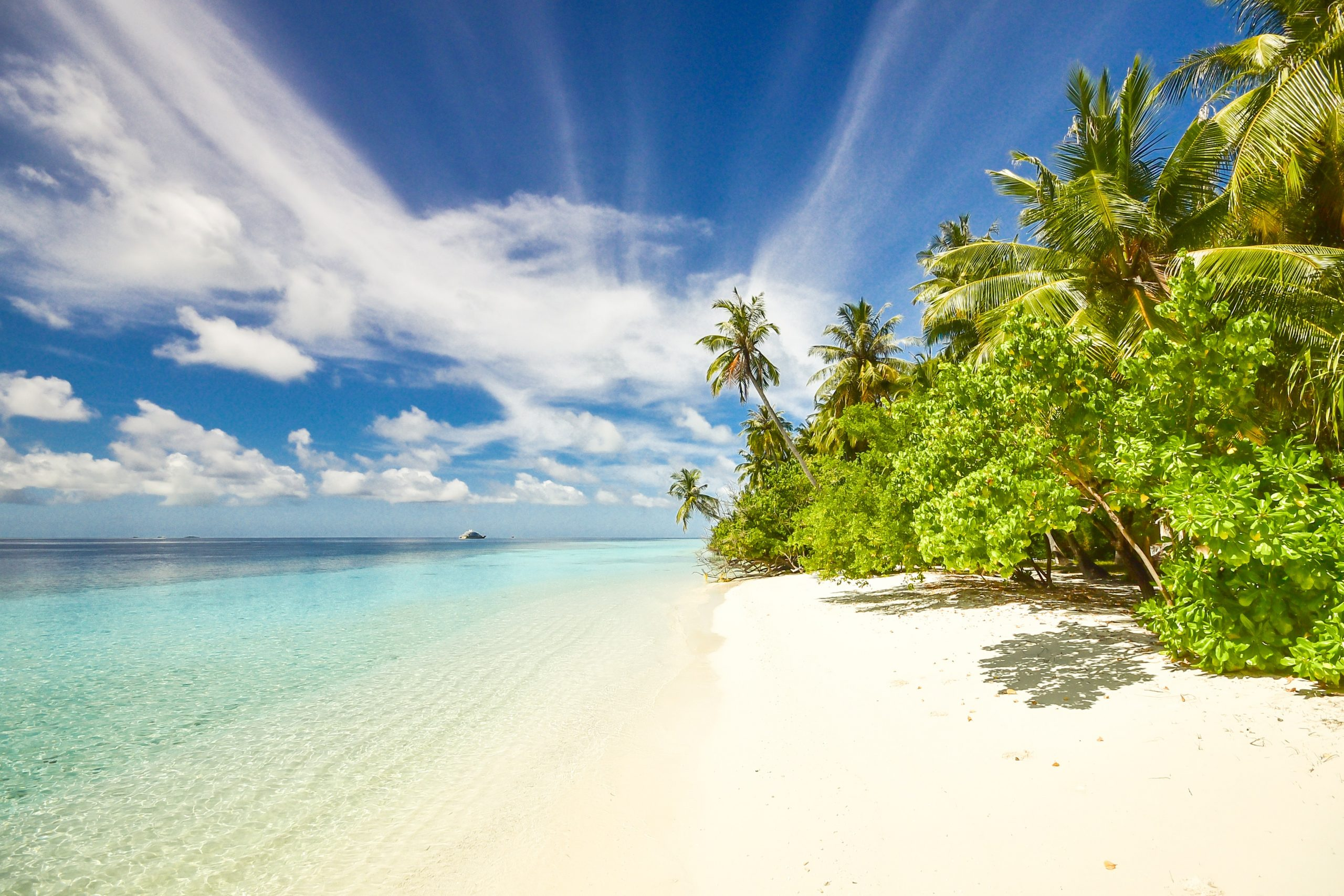 A tropical beach. Coronavirus: UK Foreign Office warns Brits not to travel 'indefinitely'
