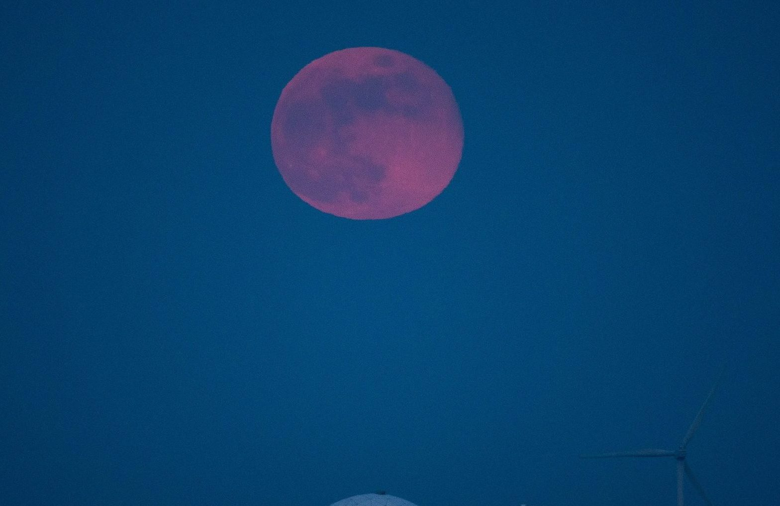 Super Pink Moon (Credit: Cover Images)
