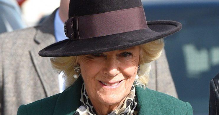 Camilla Duchess of Cornwall at Cheltenham Festival