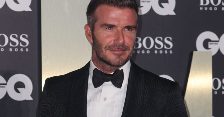 David Beckham SplashNews.com