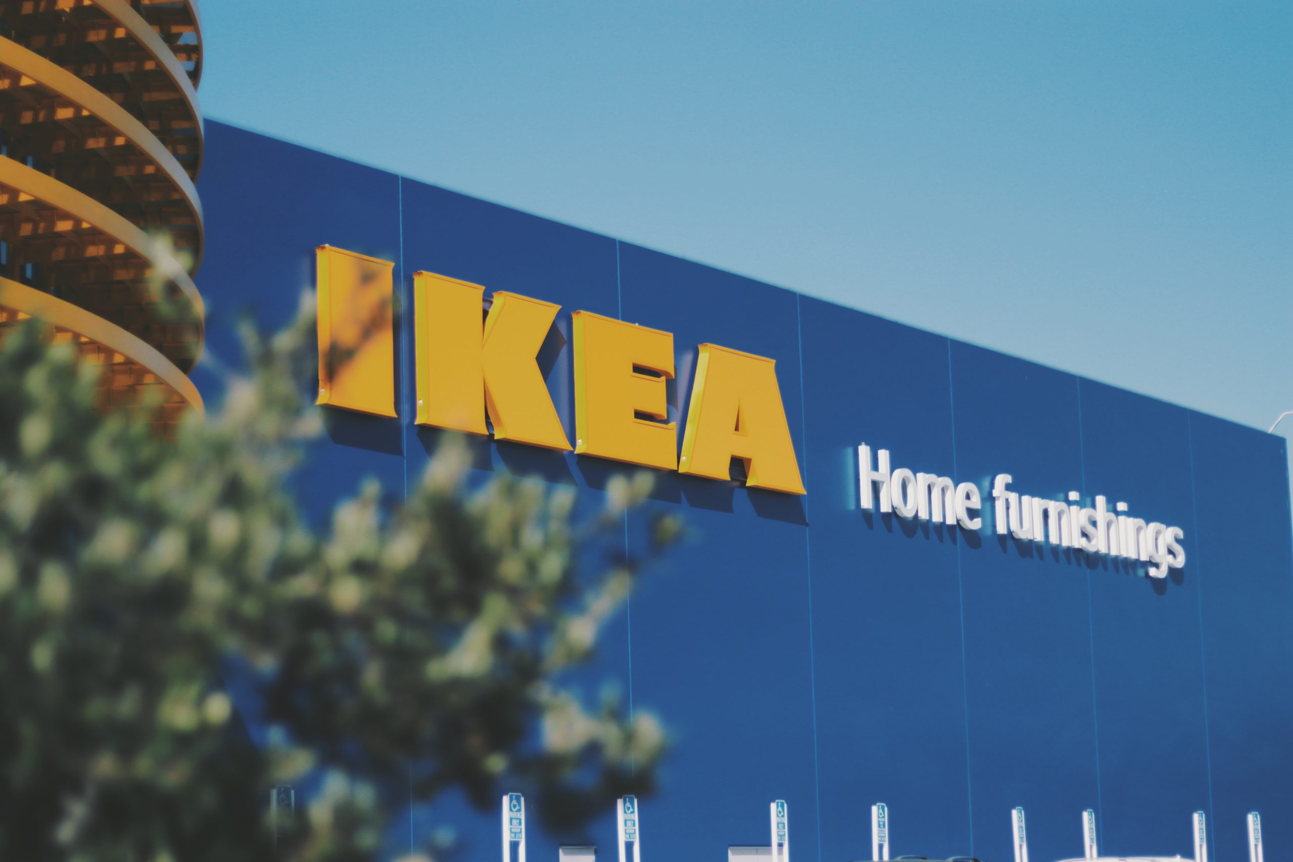 This Morning viewers astonished as show reveals shoppers queued for THREE hours at IKEA