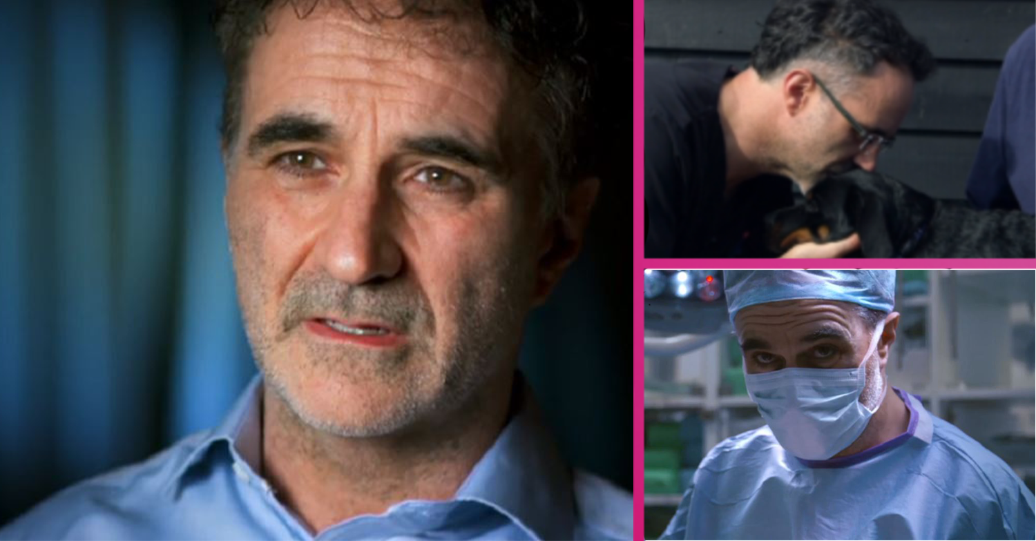 Supervet viewers in tears over adorable puppy who was beaten and left with heartbreaking injuries