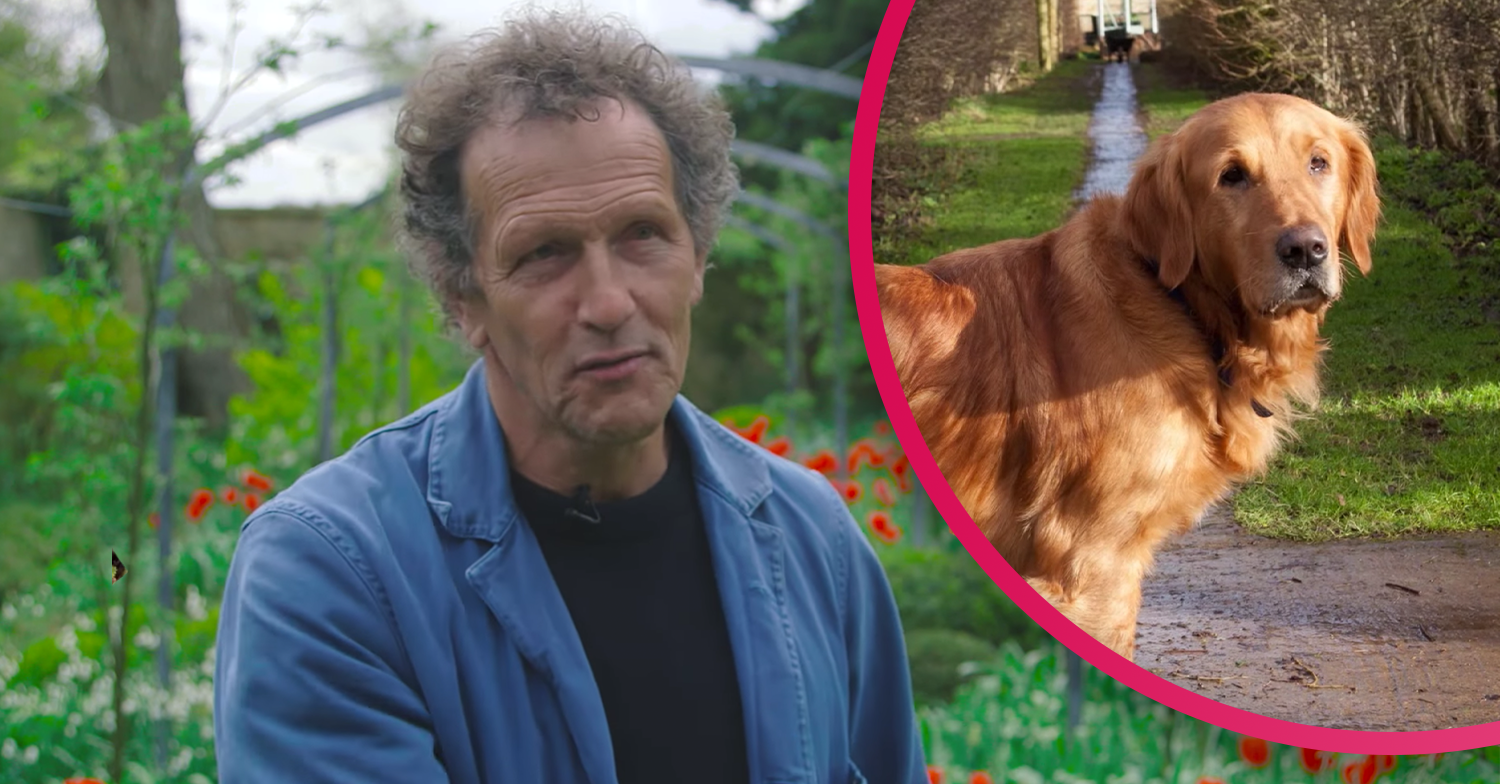 Monty Don shares beautiful tribute to his beloved dead dog Nigel