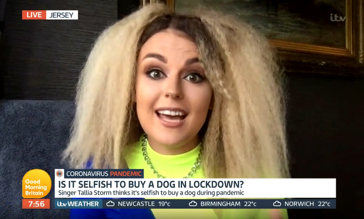 Tallia Storm criticises buying dogs during lockdown