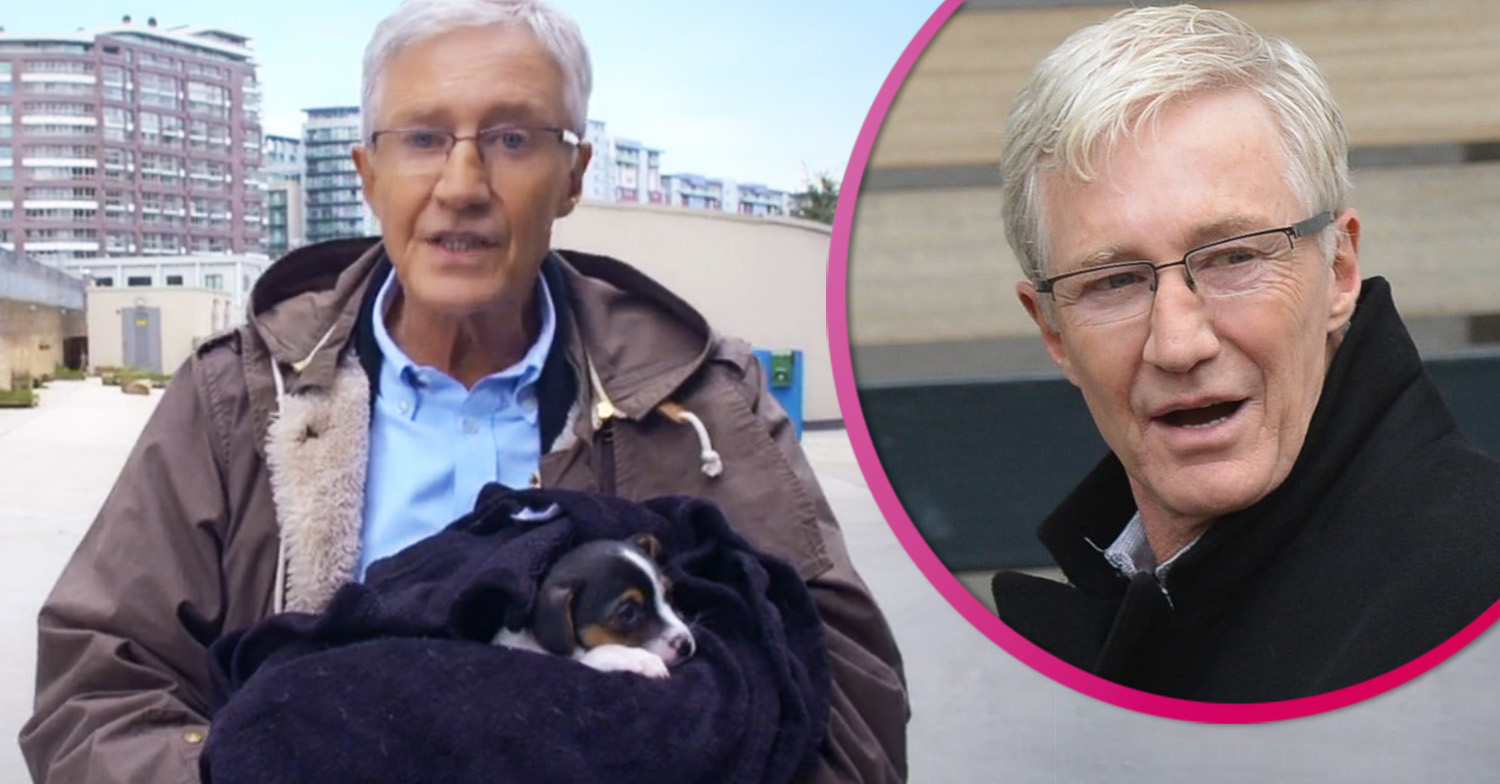Paul O'Grady: For the Love of Dogs filming delayed due to lack of pooches
