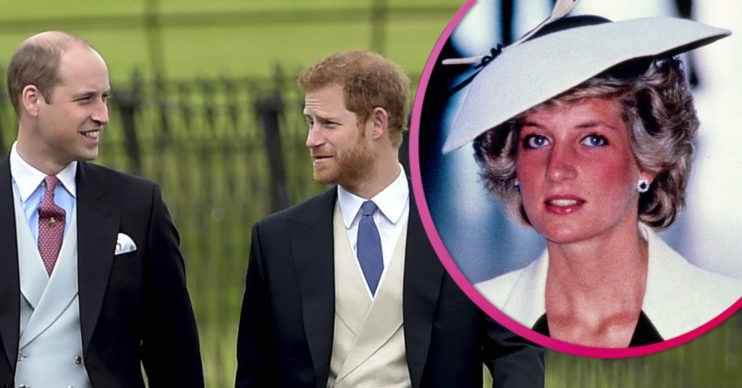 Princess Diana and Harry/William