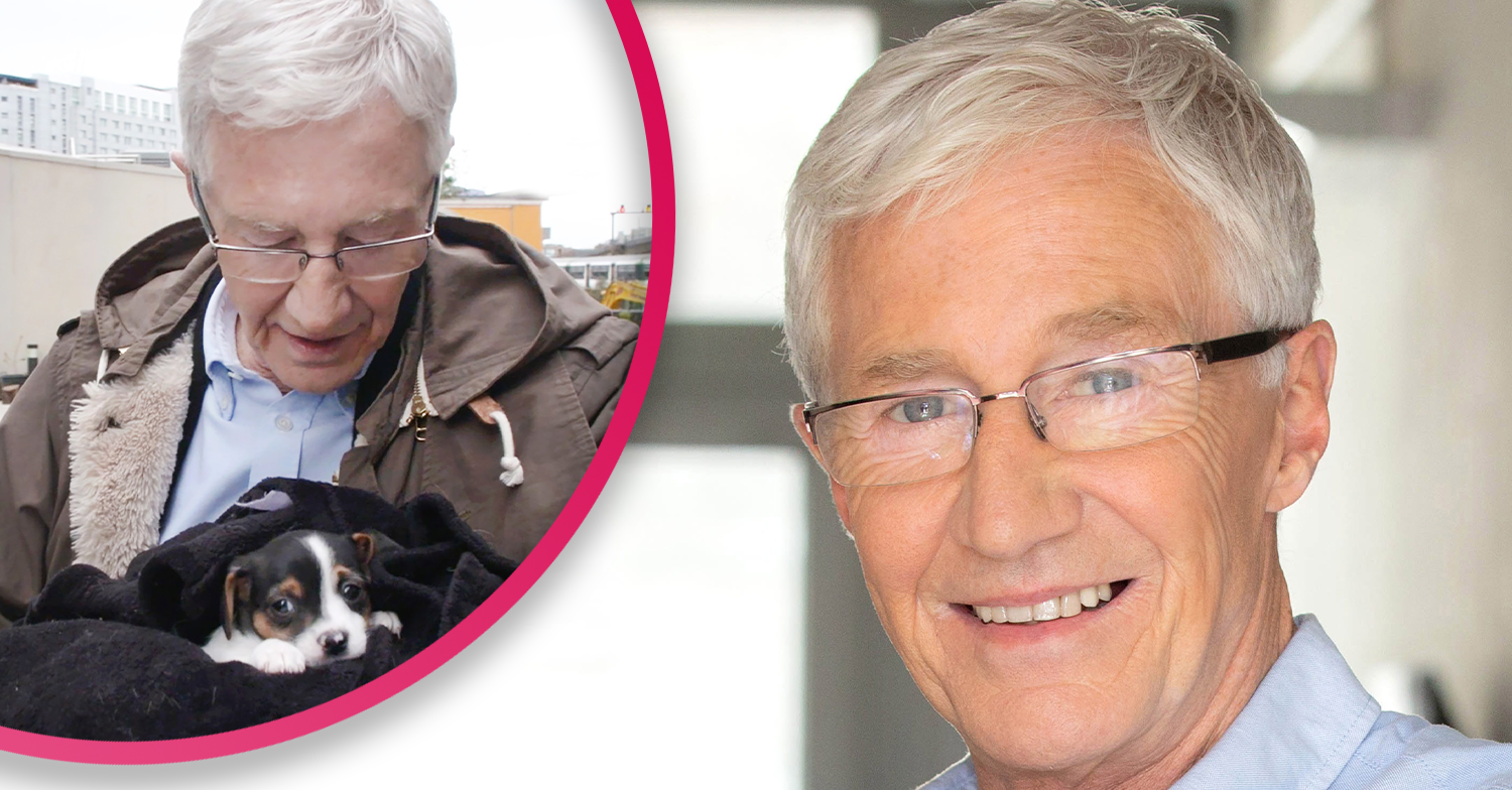 Paul O'Grady reassures fans on the future of For The Love Of Dogs after filming is suspended
