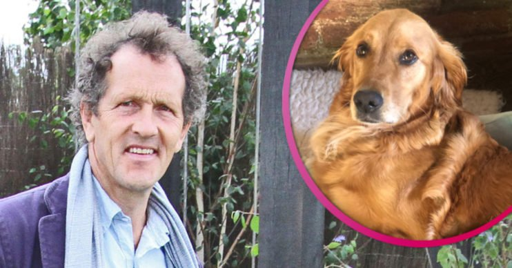 Monty Don and dog Nellie
