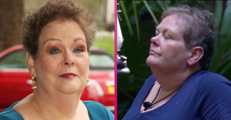 anne hegerty chase