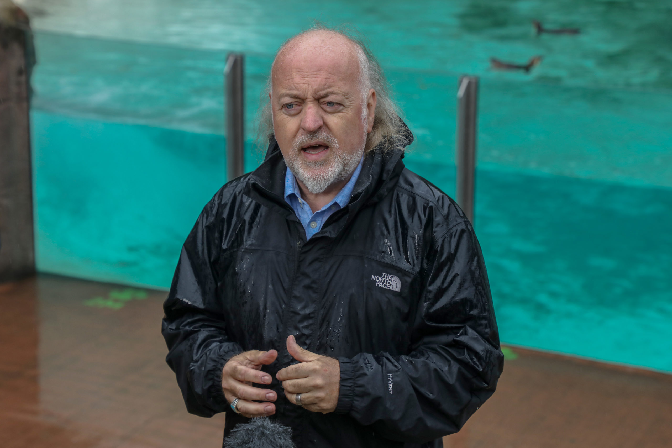 Strictly Come Dancing Bill Bailey