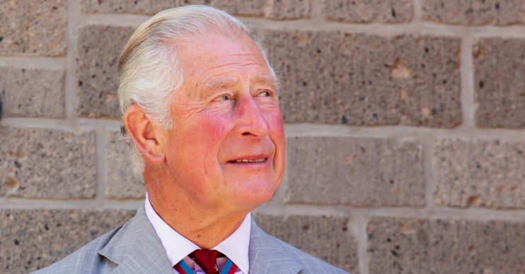 prince charles young people fears