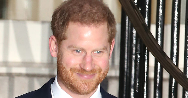 prince harry taxes usa