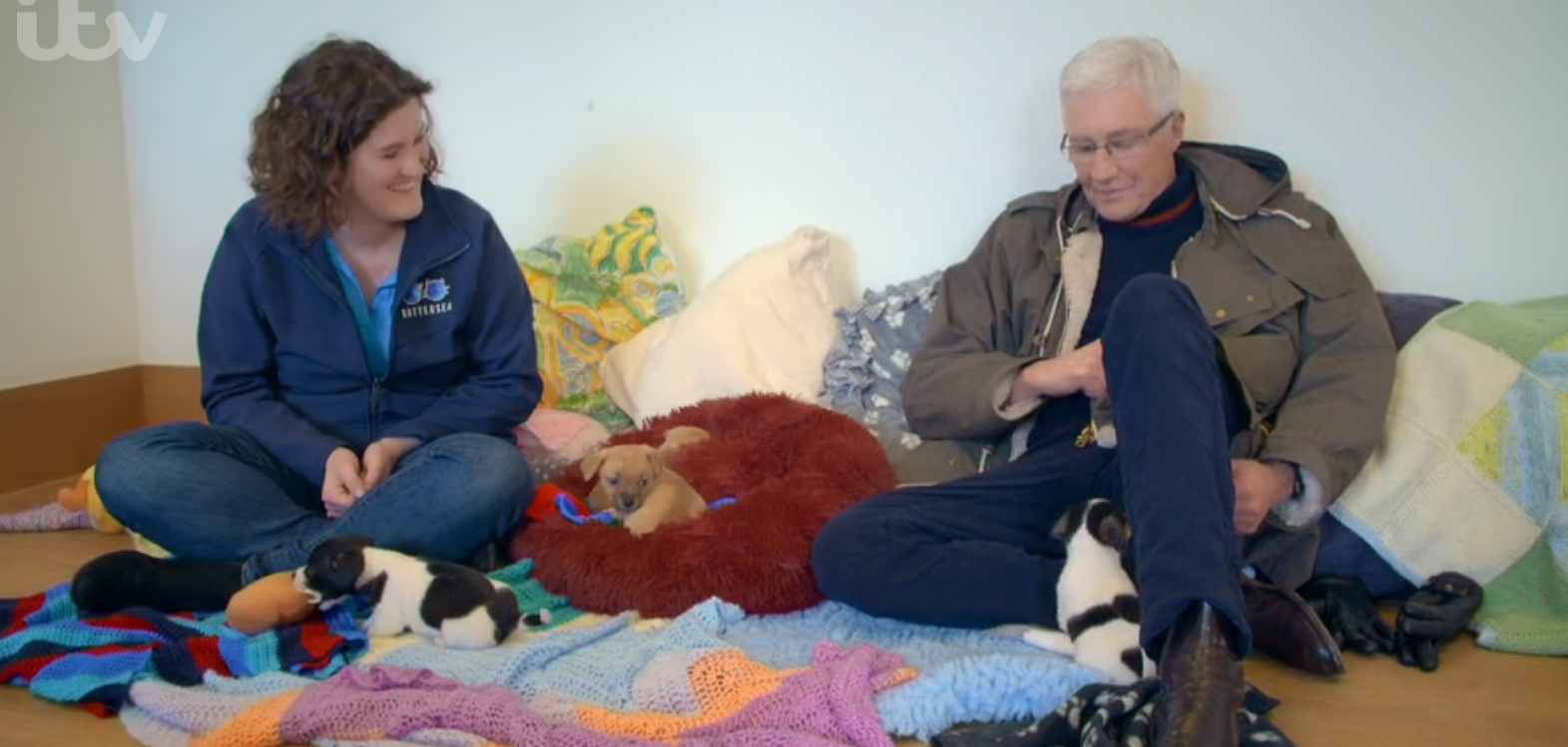 Paul O'Grady on For the Love of Dogs