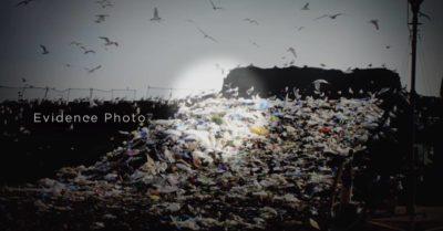 Jack Wheeler's body was found in a landfill dump