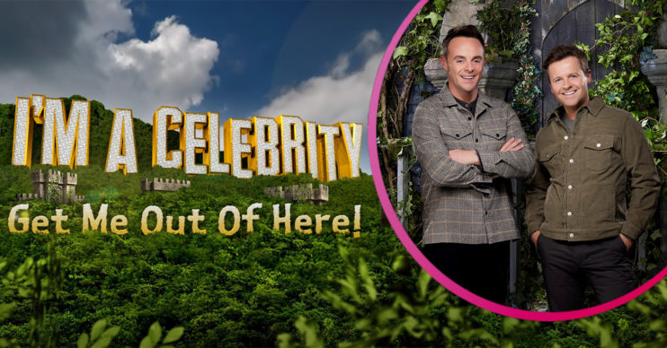 Ant and Dec hosting I'm A Celebrity from Wales