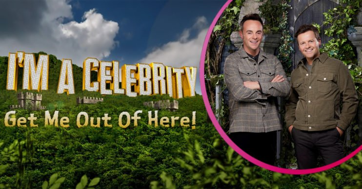 Where in Wales is I'm a Celebrity 2020