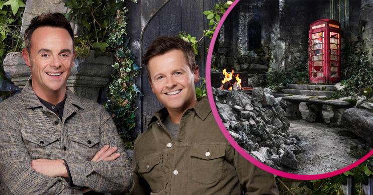 I'm A Celebrity camp first look