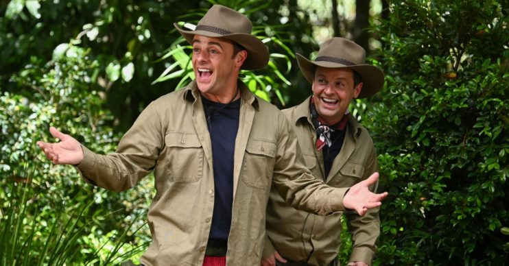 Ant and Dec take part in IAC 2020 Jungle story